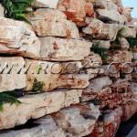 סלעים מקומיים- סלע לקט גליל