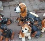 כלבים צבעוניים